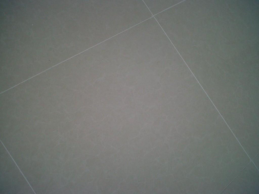 IMG00068-20100531-1030